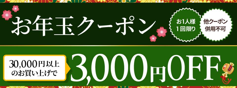 お年玉★クーポン【3,000円OFF】