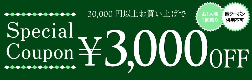 クーポン【3000円OFF】
