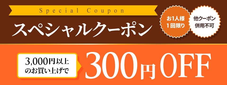 週末限定クーポン【300円OFF】